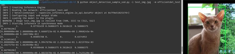 test_efficient_det_api_v2.0.png